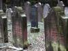 Jüdischer Friedhof, Neustadt (Hessen), 502