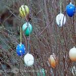 Ostern 2010: Zwei Feiertage, ein Hase, viele Eier und jede Menge Vertrauensmissbrauch