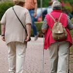 Oma und Opa sind schuld! Doch warum sind sie meine Großeltern?